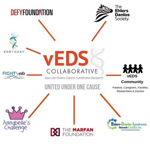 vEDS Collaborative and cooperating organizations